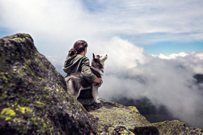 cane e padrone uguali