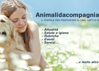 animalidacompagnia.it editoriale