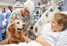 animali negli ospedali