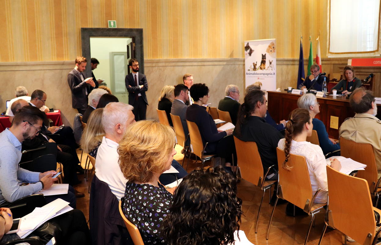 conferenza stampa (14)