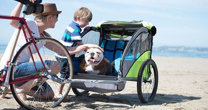 family-with-dog-on-the-beach