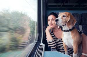 viaggiare con il cane-2