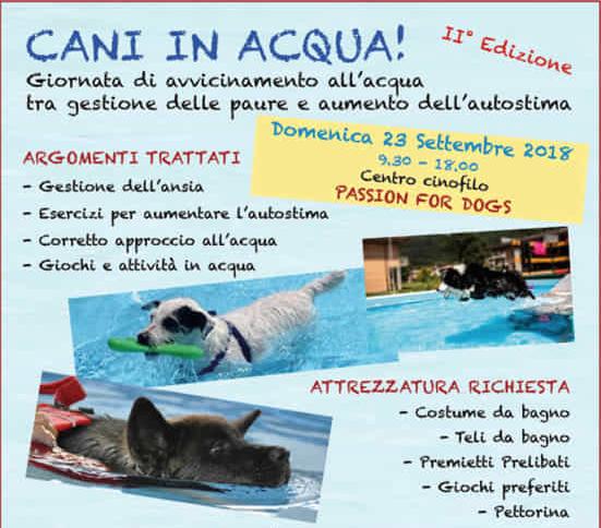 Cani in acqua 23 09 2018 san giovanni in persiceto bo - San giovanni in persiceto piscina ...