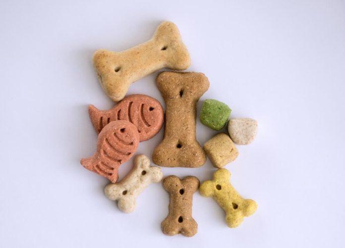 come scegliere il mangime per cani