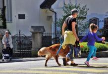 città pet friendly