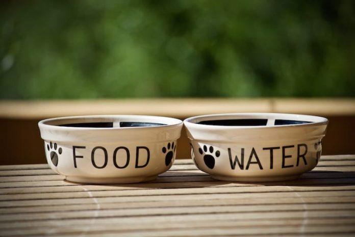 valore nutritivo degli alimenti
