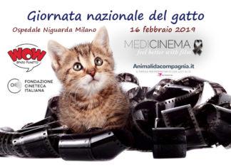 Giornata del gatto - Medicinema Italia Onlus