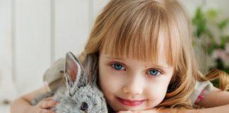 coniglio e arricchimenti ambientali