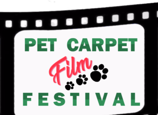 pet carpet cinema festival