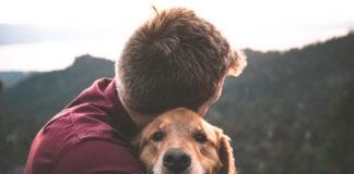 animali come esseri senzienti