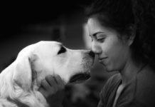 il cane assume l'umore del suo proprietario