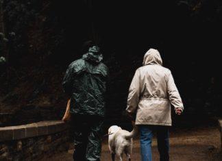 cane ha paura del temporale