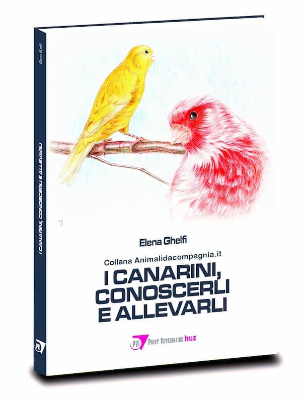 I-canarini-conoscerli-e-allevarli