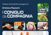 Il-coniglio-da-compagnia-copertina-Point-Vétérinaire-Italie