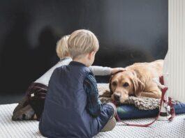 convivenza-cane-bambino