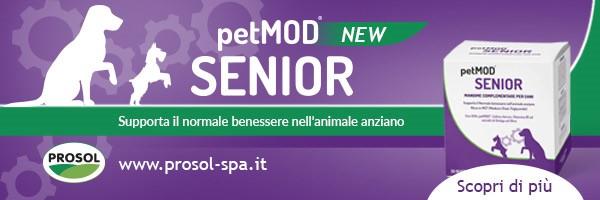 PetMOOD-Senior-Prosol_rettangolare