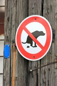 deiezioni canine città