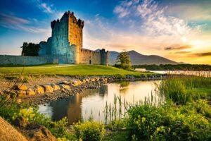 mete pet friendly Irlanda